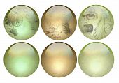 Antique Looking Pearlized Buttons With Gloss