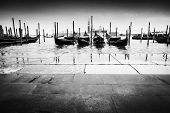 Постер, плакат: Gondolas Moored In Front Of Pavement Bw