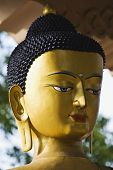 stock photo of siddhartha  - Statue of lord Buddha in a park - JPG