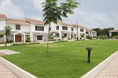 picture of karnataka  - Lawn in front of bungalows - JPG
