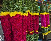 image of tamil  - Garlands for sale hanging at a market stall - JPG