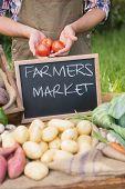 image of farmer  - Farmer selling organic veg at market on a sunny day - JPG