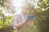 foto of farmer  - Farmer using his tablet pc on a sunny day - JPG