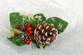 picture of mistletoe  - xmas decoration with pine cone and mistletoe on shiny mesh - JPG