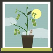 stock photo of bine  - Money Sprouting  - JPG