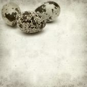 foto of quail  - textured old paper background with speckled quail eggs - JPG