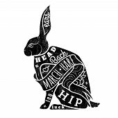 picture of hare  - Vector  Black Hare - JPG