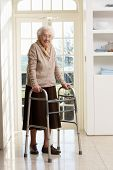 stock photo of zimmer frame  - Elderly Senior Woman Using Walking Frame - JPG