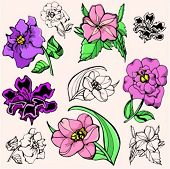 A vector illustration of flowers.