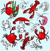 A set of 7 crab, lobster and shrimp vector illustrations in color, and black and white renderings.