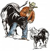 picture of bareback  - Illustration of a rodeo bullfighting - JPG