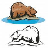 Vector illustration of a beaver.