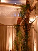 Chuppah At Jewish Wedding