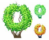 Vector illustration of an extra detailed tree alphabet symbols. Easy detachable crown. character o