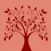 árbol de Funky