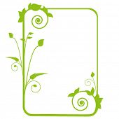 elegant foliage frame