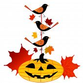 stock photo of shiting  - Pumpkin with birds on pole - JPG