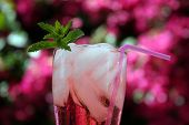 cherry lemon lime soda outside with a sprig of mint a pink bendable straw with hot pink beauganvilla flowers in the background