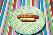 Hot Dogs with Words and Slogans written in Yellow Mustard