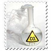 Frozen Carbon Dioxide, aka CO2 aka Dry Ice reacts violently when mixed with water, releasing CO2 int