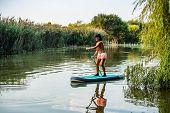 Woman Stand Up Paddleboarding On Lake. Young Girl Doing Watersport On Lake. Female Tourist In Swimwe poster