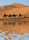 Camel caravan going along the lake the Sahara Desert, Morocco.