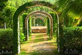 stock photo of pergola  - Pergola and plant in a garden at western Thailand - JPG