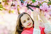 Tenderness Concept. Girl On Dreamy Face Standing In Front Of Sakura Flowers, Defocused. Cute Child E poster