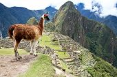 stock photo of ancient civilization  - Ancient Inca lost city Machu Picchu - JPG