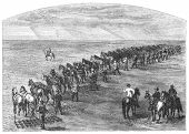 Agriculture in Dakota, USA: Harrowing. Image source: Harper's Monthly magazine march 1880.