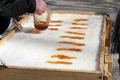 Pouring Hot Maple Syrup Onto Snow To Make Maple Taffy A Sweet Treat On A Popsicle Stick