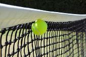 Tennis Ball In Net.