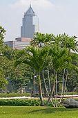 Lush Tropical Park, Bangkok