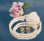 Two golden pearl ear rings inside a pearl necklace, with a seashell and a hibiscus  blossom
