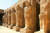 Egyption statues of kings in Temple of Karnak, Egypt