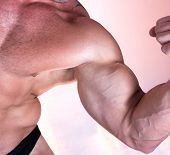 Muscle man biceps isolated on pink background