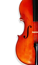 picture of musical instrument string  - Cello isolated on white with shadow - JPG