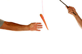 stock photo of dangling a carrot  - The classic business metaphor of  - JPG