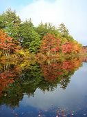 fall foliage in new hampshire 2