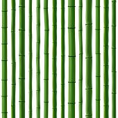 Seamless Background Of Green Bamboo Forest.