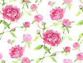 Watercolor seamless pink peonies pattern