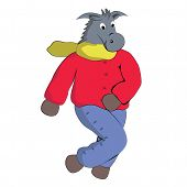 Donkey in winter clothes