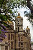 Basilica And Trees