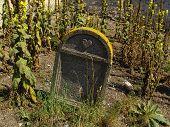 Old Jewish Cemetery In Myslin