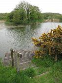 Lake Landscape With Fishing Pontoon