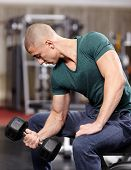 Athletic young man working his biceps with heavy dumbbells