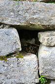 Human Bones At Kuelap Ruins