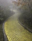 stock photo of wizard  - Yellow Brick Road winding through the forest - JPG