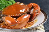 stock photo of exoskeleton  - Close up Singapore chili mud crab in restaurant - JPG