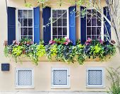 Charleston Old Town House
